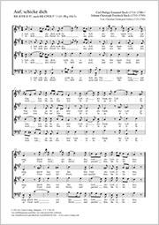 Carl Philipp Emanuel Bach: Auf, schicke dich