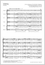 Ludwig van Beethoven: Erlkönig