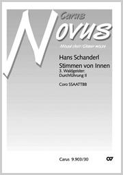 Hans Schanderl: 3. Waldgeister: Durchführung II