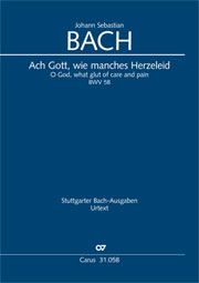 Johann Sebastian Bach: O God, what glut of care and pain
