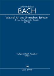 Johann Sebastian Bach: Was soll ich aus dir machen, Ephraim