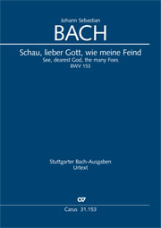 Johann Sebastian Bach: See, dearest God, the many foes