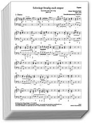 Johann Sebastian Bach: Sämtliche Orgelstimmen der geistlichen Chormusik im Set