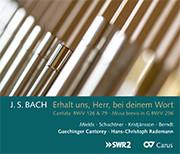 Bach: Erhalt uns, Herr, bei deinem Wort (Rademann)